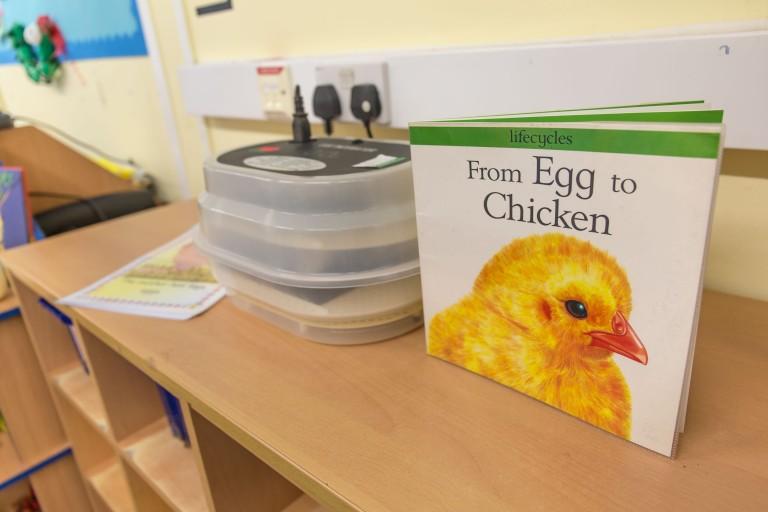 Bloxwich Nursery Eggs0003